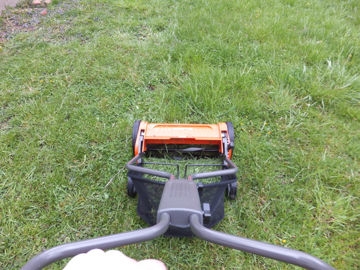 Here I am mowing the lawn - the cut lawn is on the left.