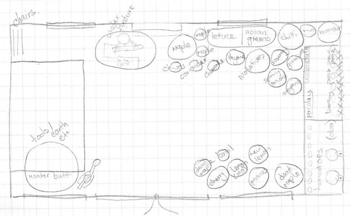 The plan of my little garden (with extras included). The table is moved when guests visit.