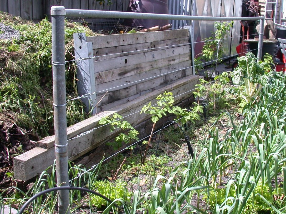 Easy Backyard Landscaping Ideas For Beginners In Square: Easy Vertical Gardening Ideas For Beginners