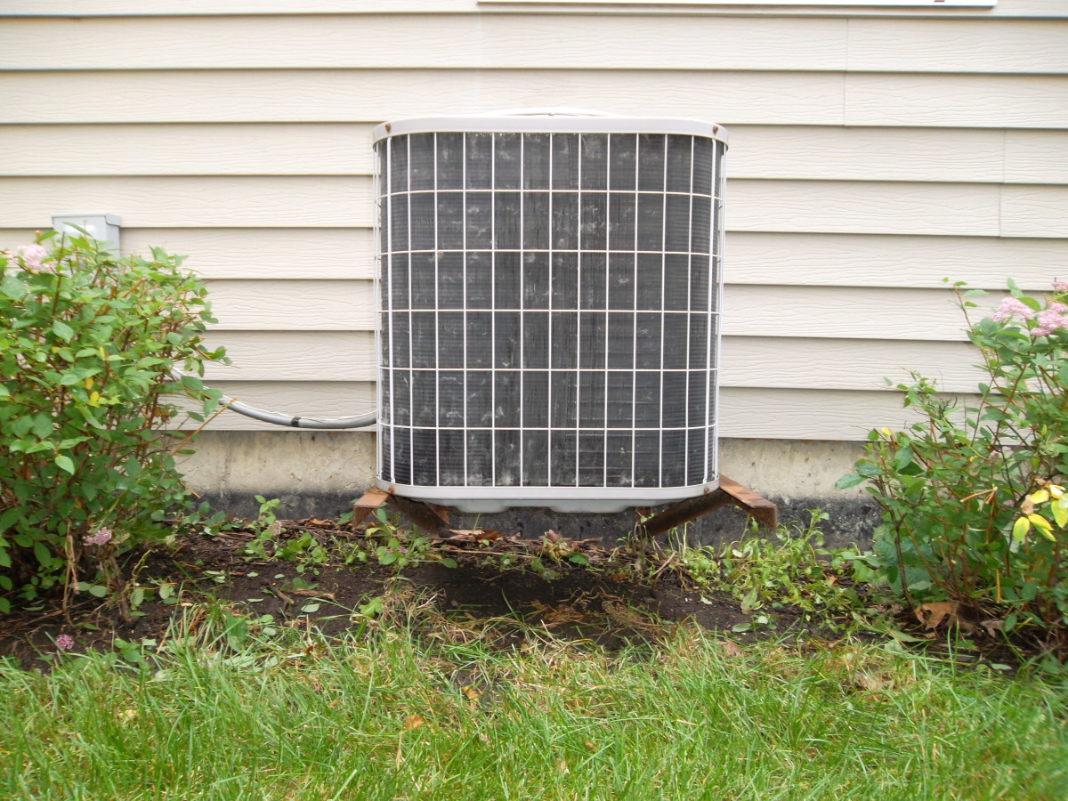 Trim plants away from air conditioning unit