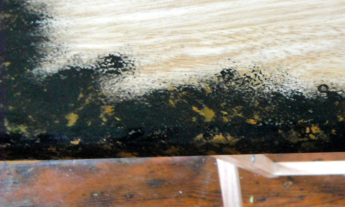 Sponged black paint with gold
