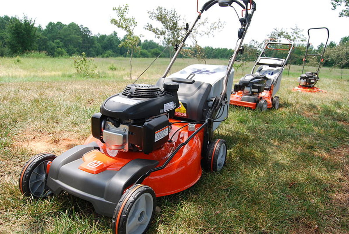 Typical rotary lawn mower