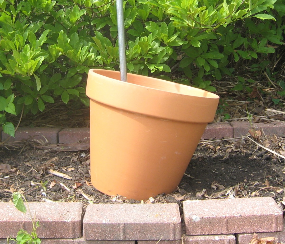 Note that the rod is straight, but the pot is tilted.  That is because of the trench that was dug into the ground.