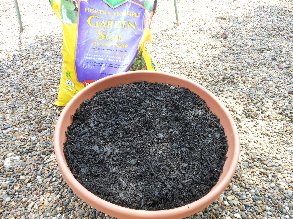 Cover the gravel with good quality potting soil. Leave about one inch between the edge of the container and the top layer of soil.