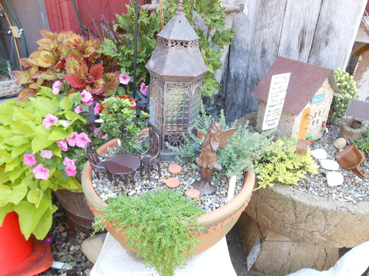 Miniature Fairy Garden Ideas 17 best images about miniature fairy gardens on pinterest gardens miniature fairy gardens and Fairy Garden Ideas