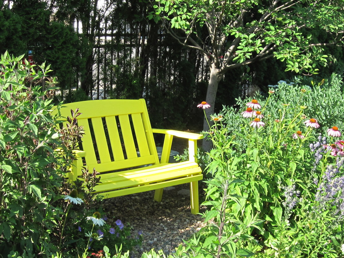 A bright yellow chair adds a pop of color in the test garden's wildflower meadow.