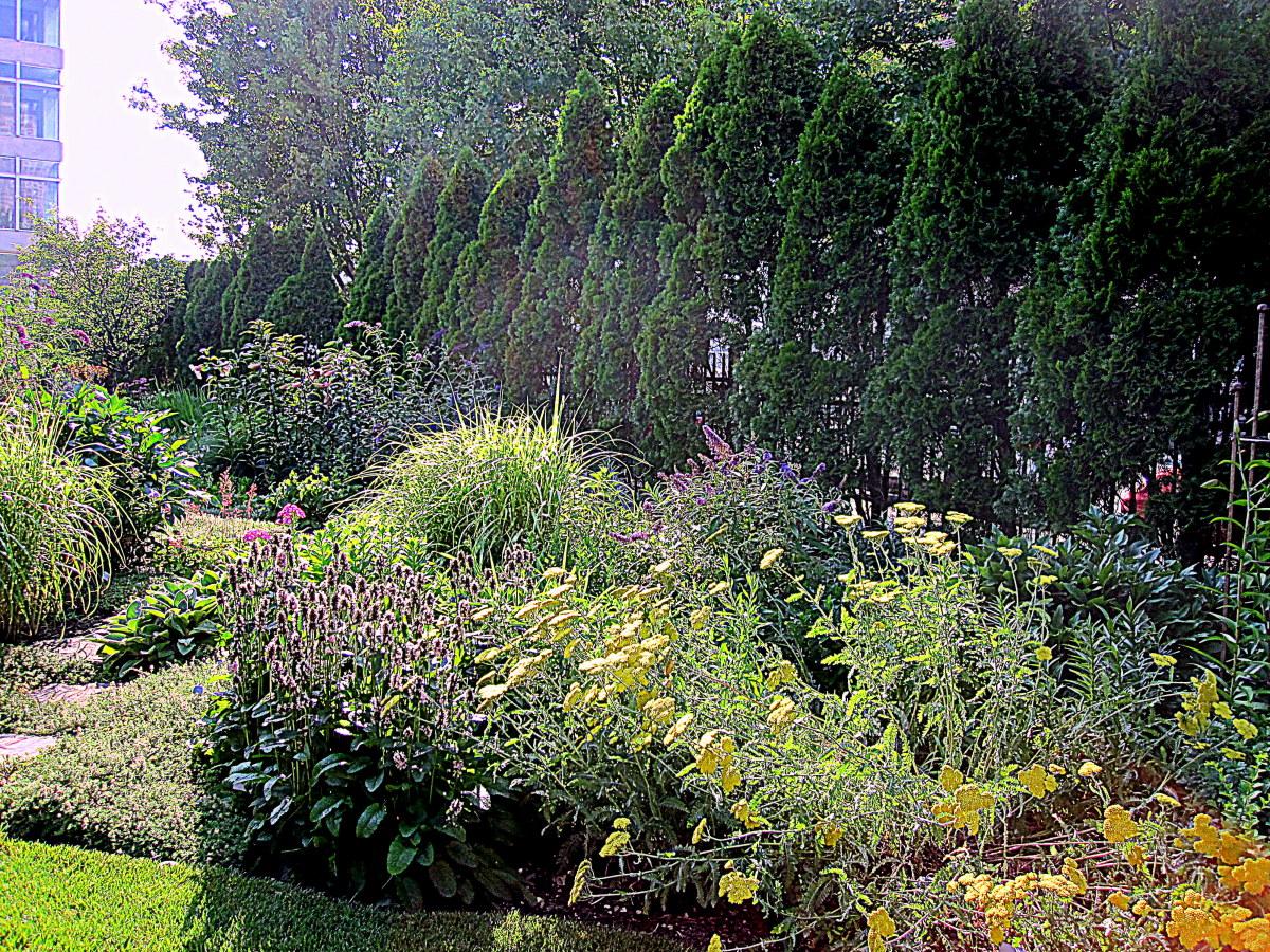 Garden design ideas from the better homes and gardens test garden for Better homes and gardens test garden