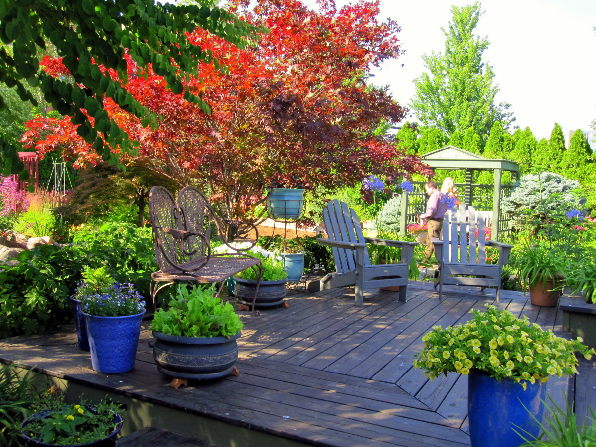 A low wooden deck in the test garden serves as a relaxing outdoor seating area.