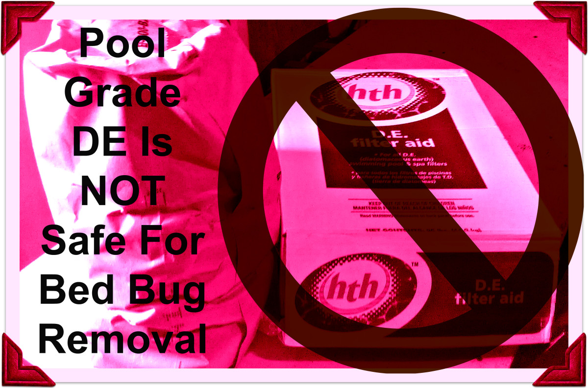 Are you using the wrong kind of DE for bedbugs? Pool-grade DE is unsafe for bedbug removal.