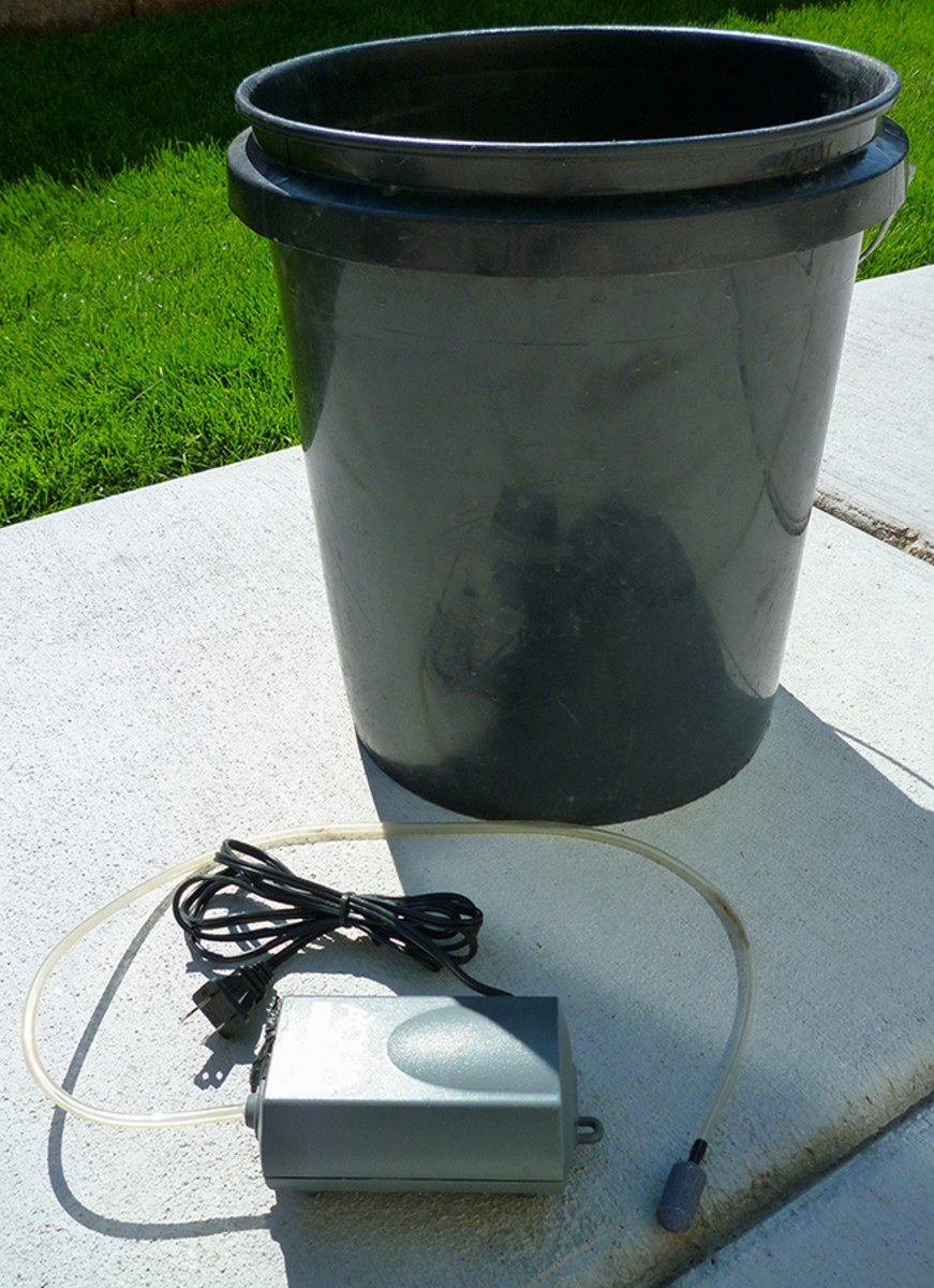 A five gallon bucket and aquarium air pump is all you need for an easy aerated compost tea brew!