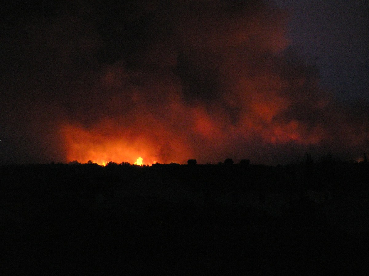 Wildland Urban Interface (WUI) - Homes and Forest  Fire