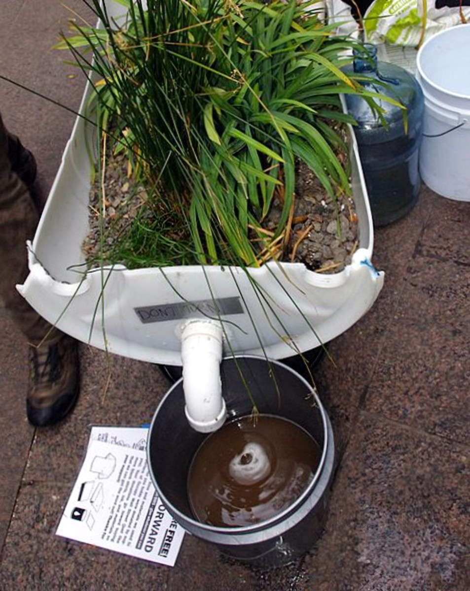 Greywater left over from watering indoor plants can be used to flush toilets.