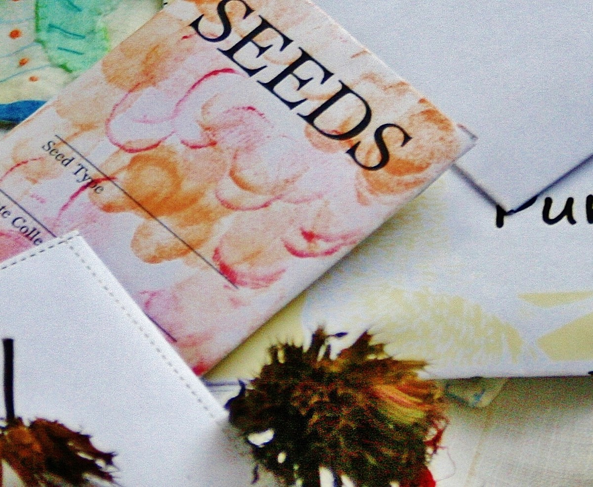 Finger paints add visual interest to plain seed packets.