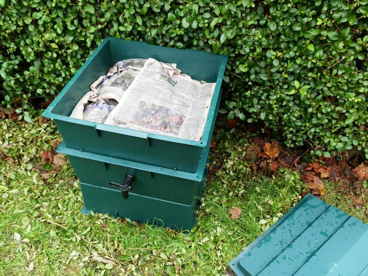 how-to-set-up-a-worm-composting-bin