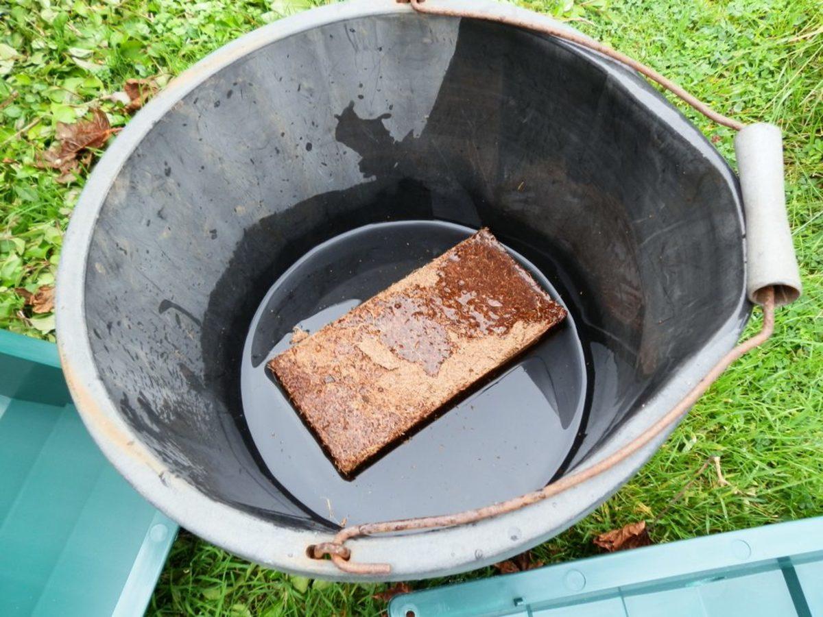 block of coir in water