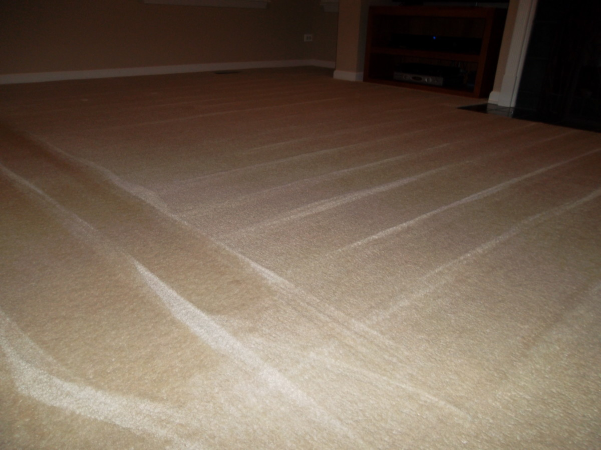 Deep clean carpet in small sections until complete.