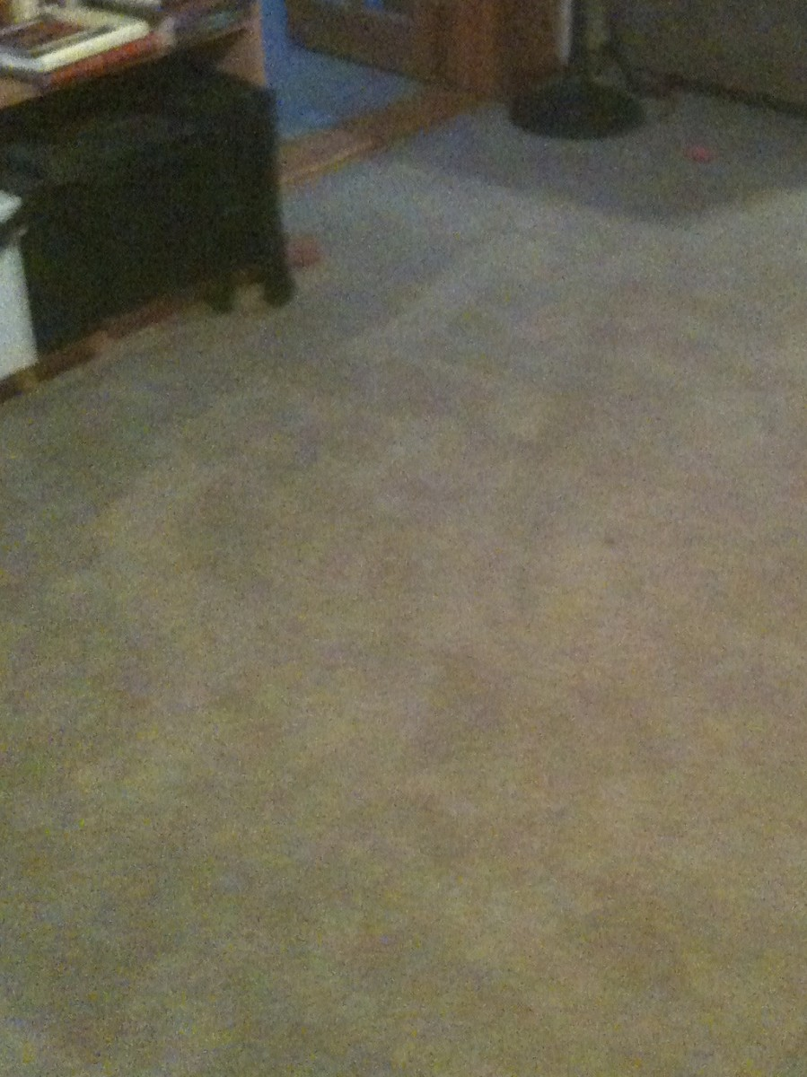 A clean carpet after Rug Doctor