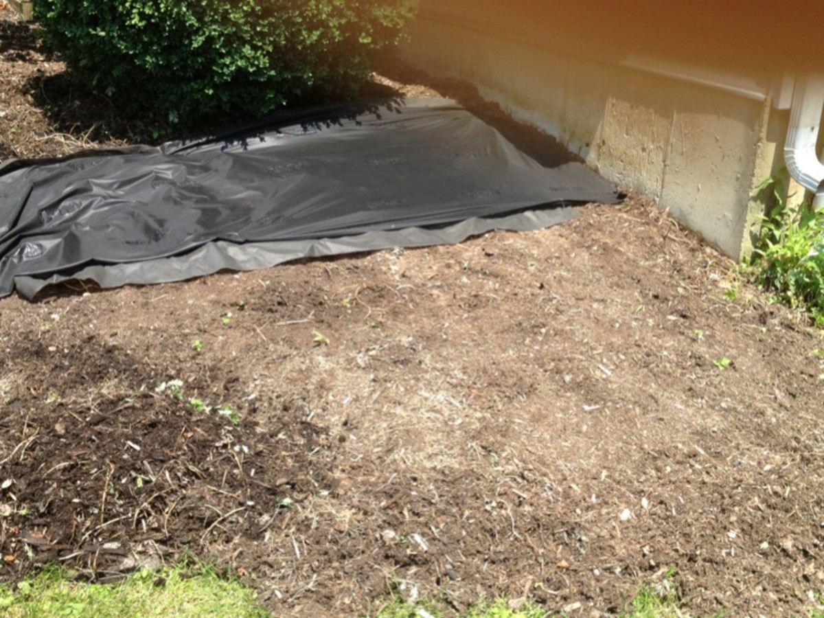 Laying tarp down before planting to prevent weeds