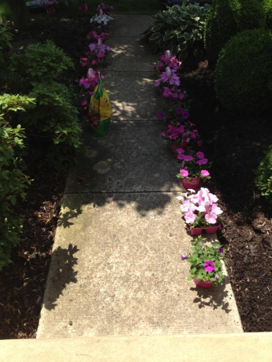 Preparing to plant flowers