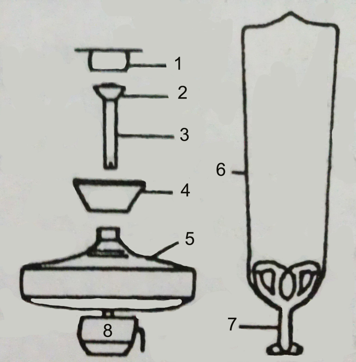 Ceiling fan parts: 1) mounting plate, 2) mounting ball on the down rod, 3) down rod, 4) canopy/cover, 5) fan motor, 6) blade, 7) blade mount and 8) light fixture.