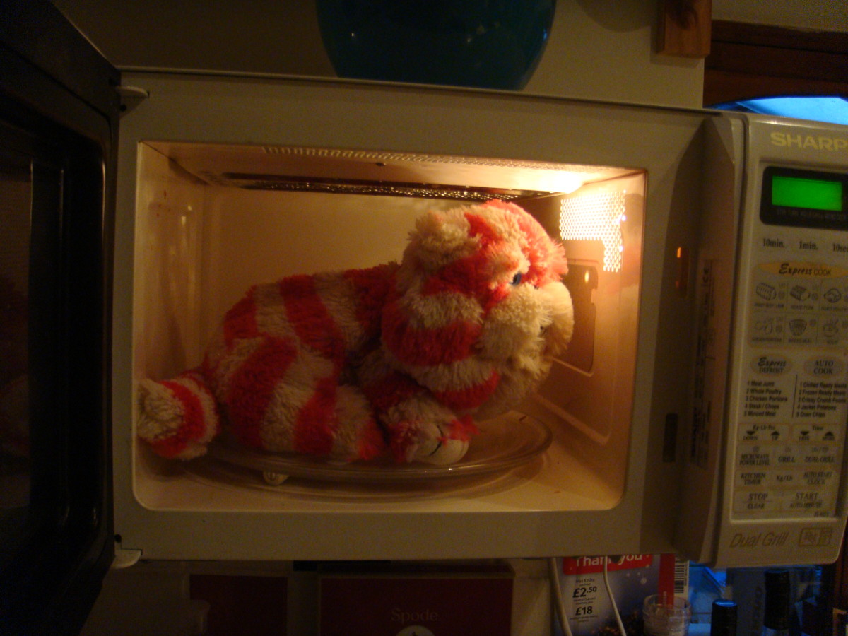Heat a hottie in the microwave