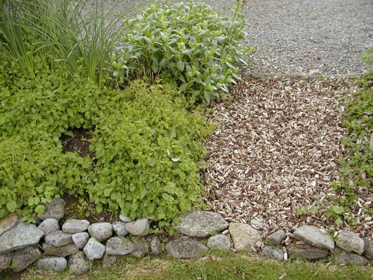 You can make your own chippings from branches using a low cost electric chipper.