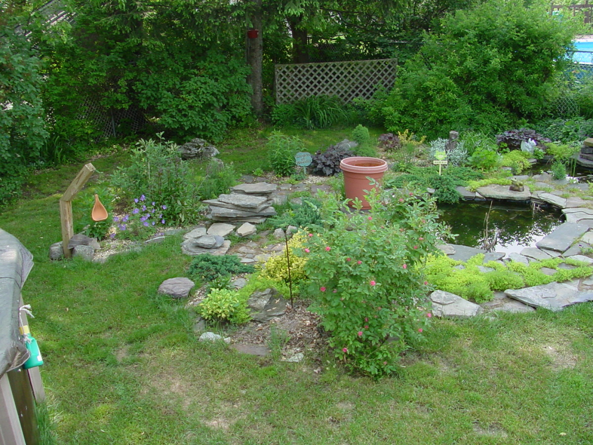 This is my pond with pond liner.  Notice the stones piled up, entire landscaping wasn't finished.
