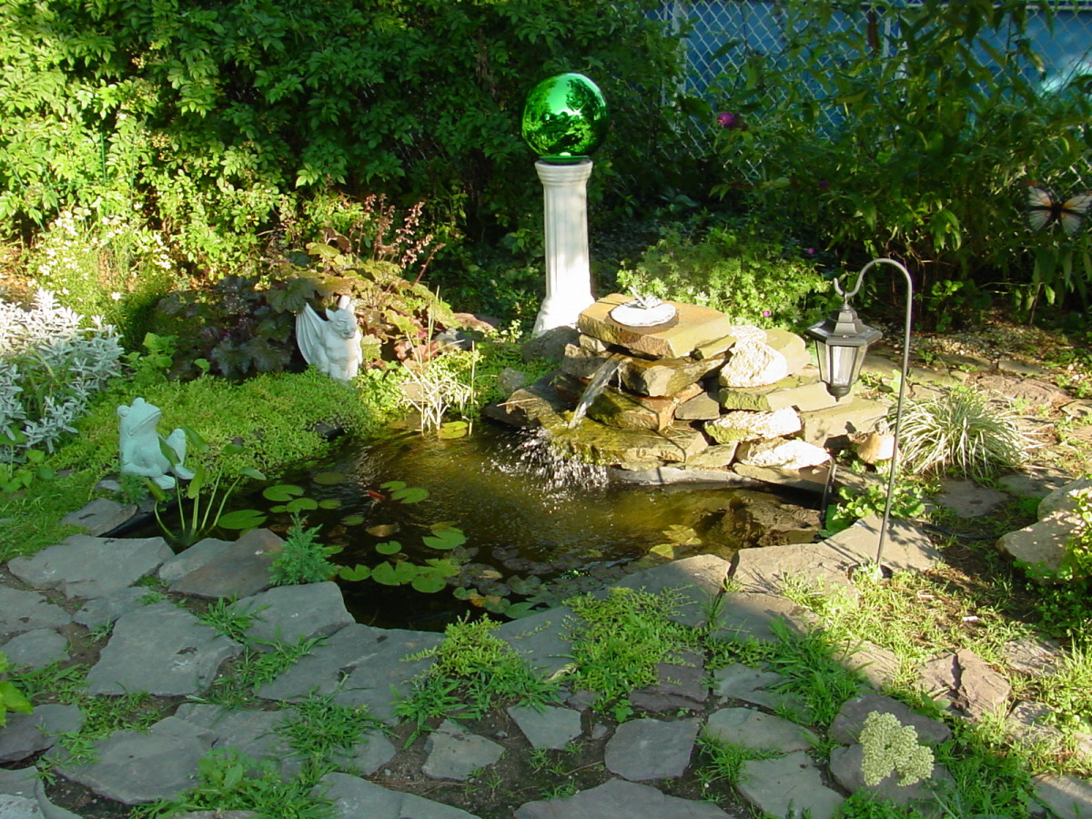 This is my small pre-formed pond