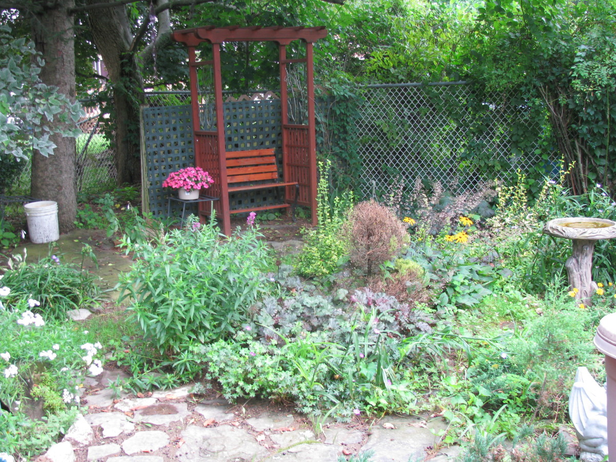 How to make your own backyard pond for Make your own garden pond