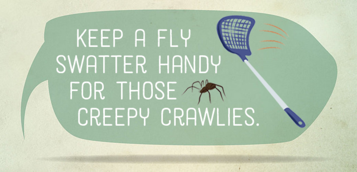 Keep a fly swatter handy for those creepy crawlies.