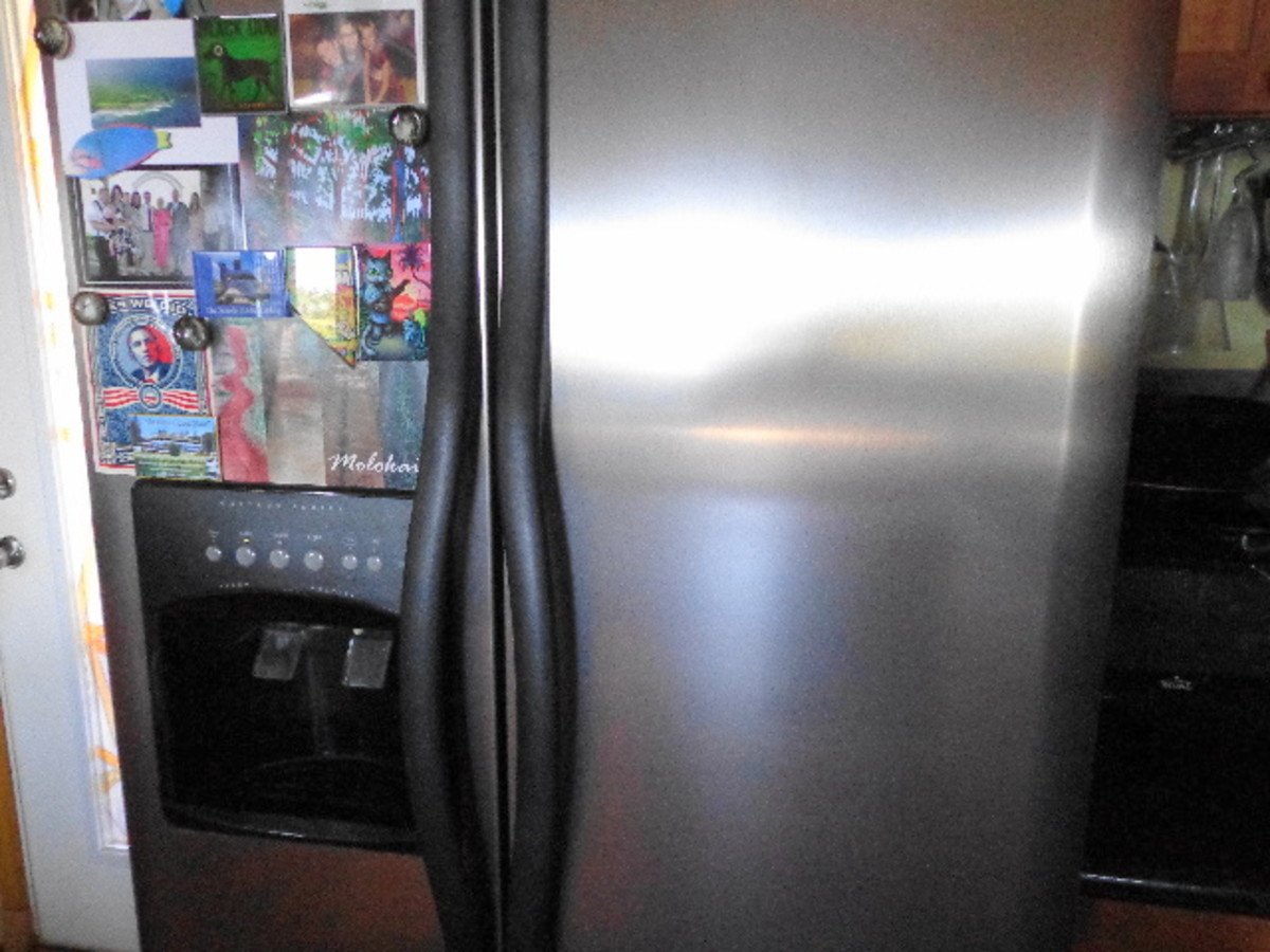 Although the fridge is wiped down daily or weekly, I use stainless cleaner once a month.