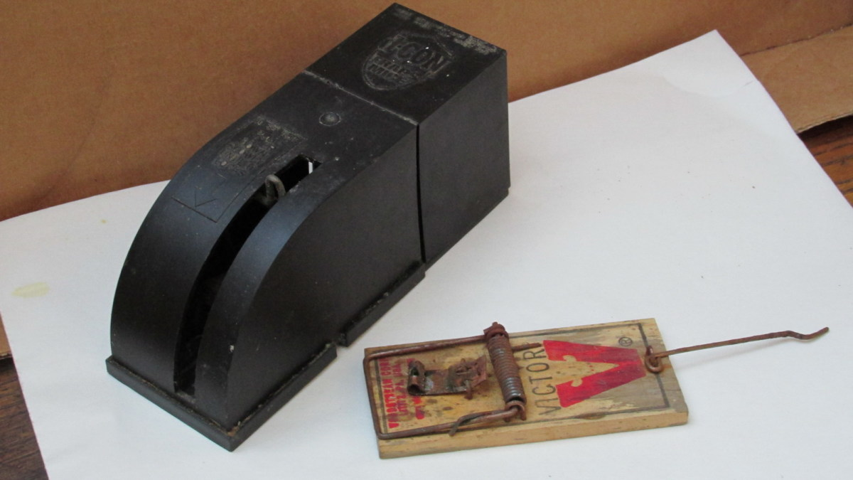Enclosed Rodent Snap Trap and Old-Fashioned Snap Trap.  Both very efficient and inexpensive alternatives to poison baits.