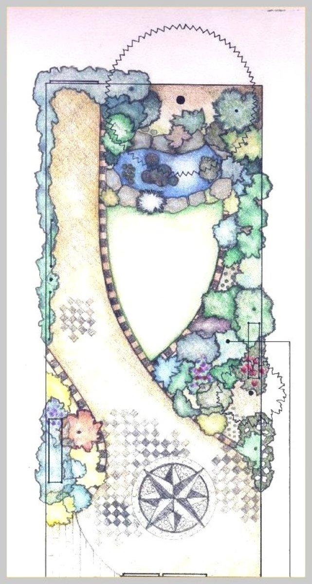 The garden design by Helen Lush