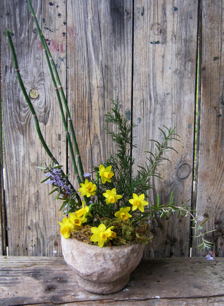 This arrangement also includes rosemary in flower, horsetails, and some sphagnum moss.