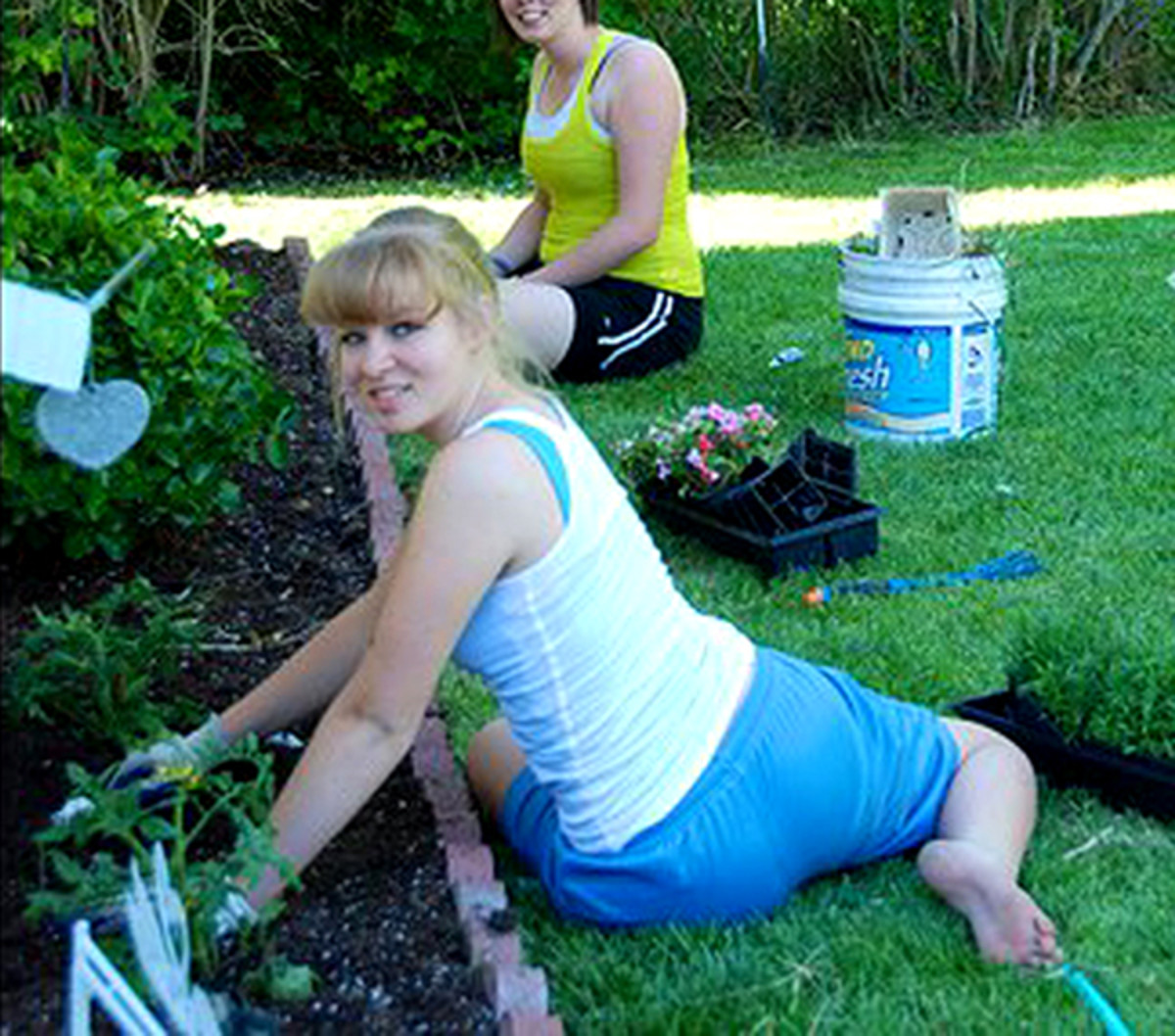 Use willing friends and family as cheap landscape labor. Reward them with a barbeque and beer!