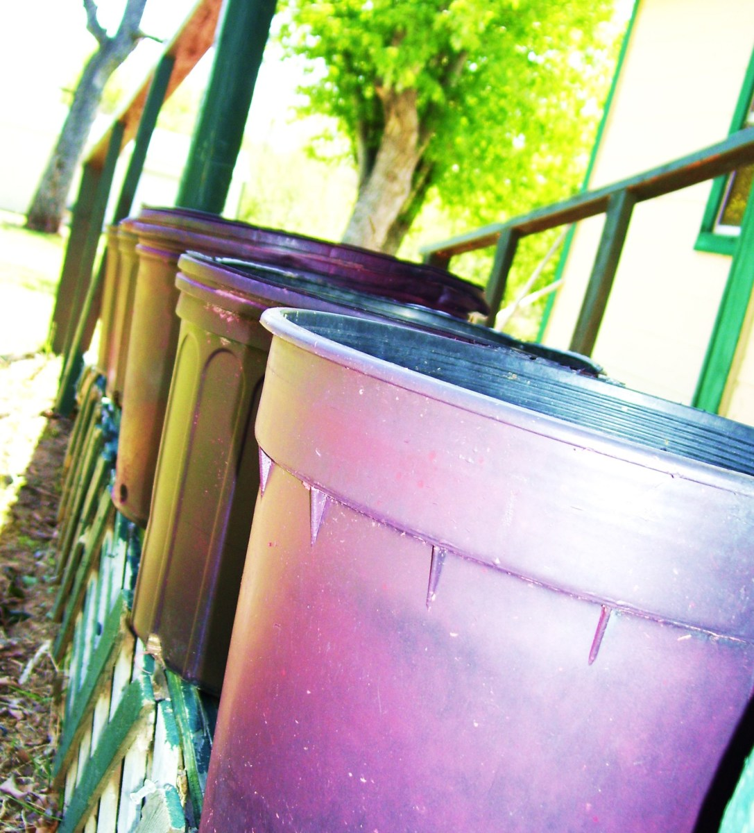 Pink pots all lined up and waiting for marigolds.