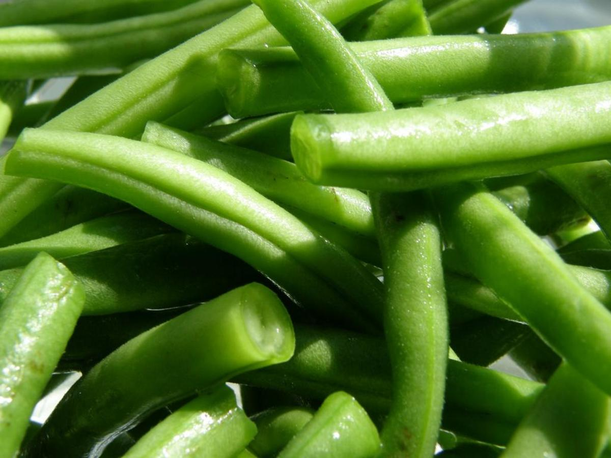 Green beans are an old-time favorite for summer planting.