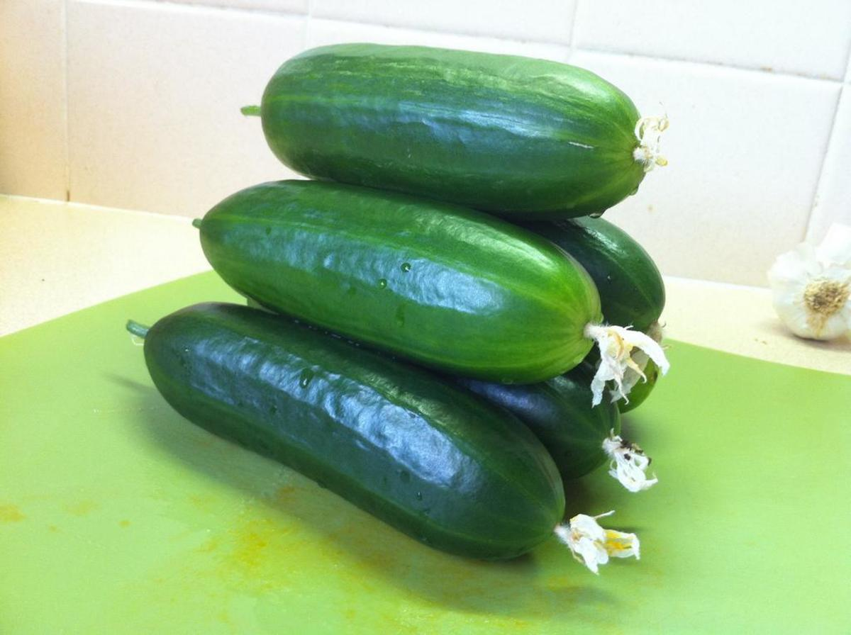 Cucumbers grow fast enough to be planted in June and get through to harvest.