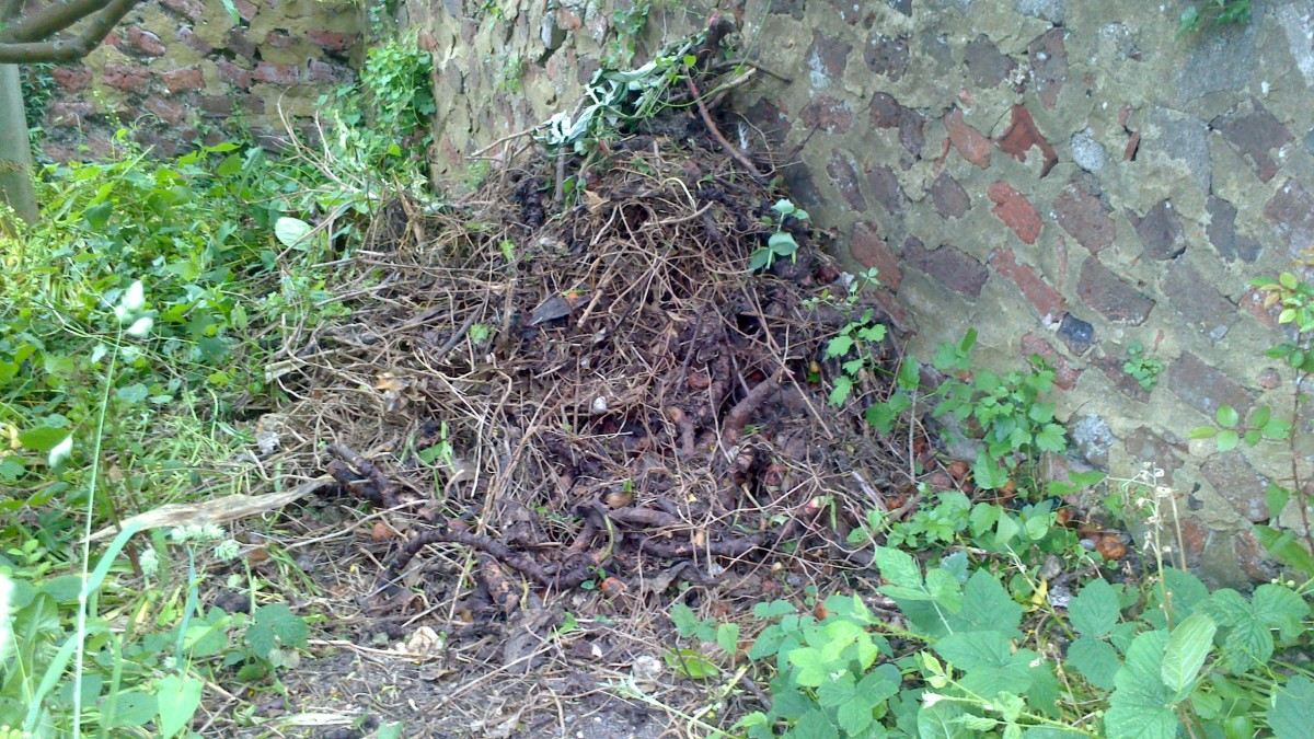 how-to-make-compost-stop-it-going-slimy-turning-to-sludge