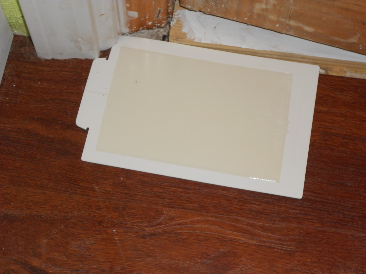 Sticky mouse traps should be placed where mice normally travel.  Placing them in corners and along base boards is usually best.