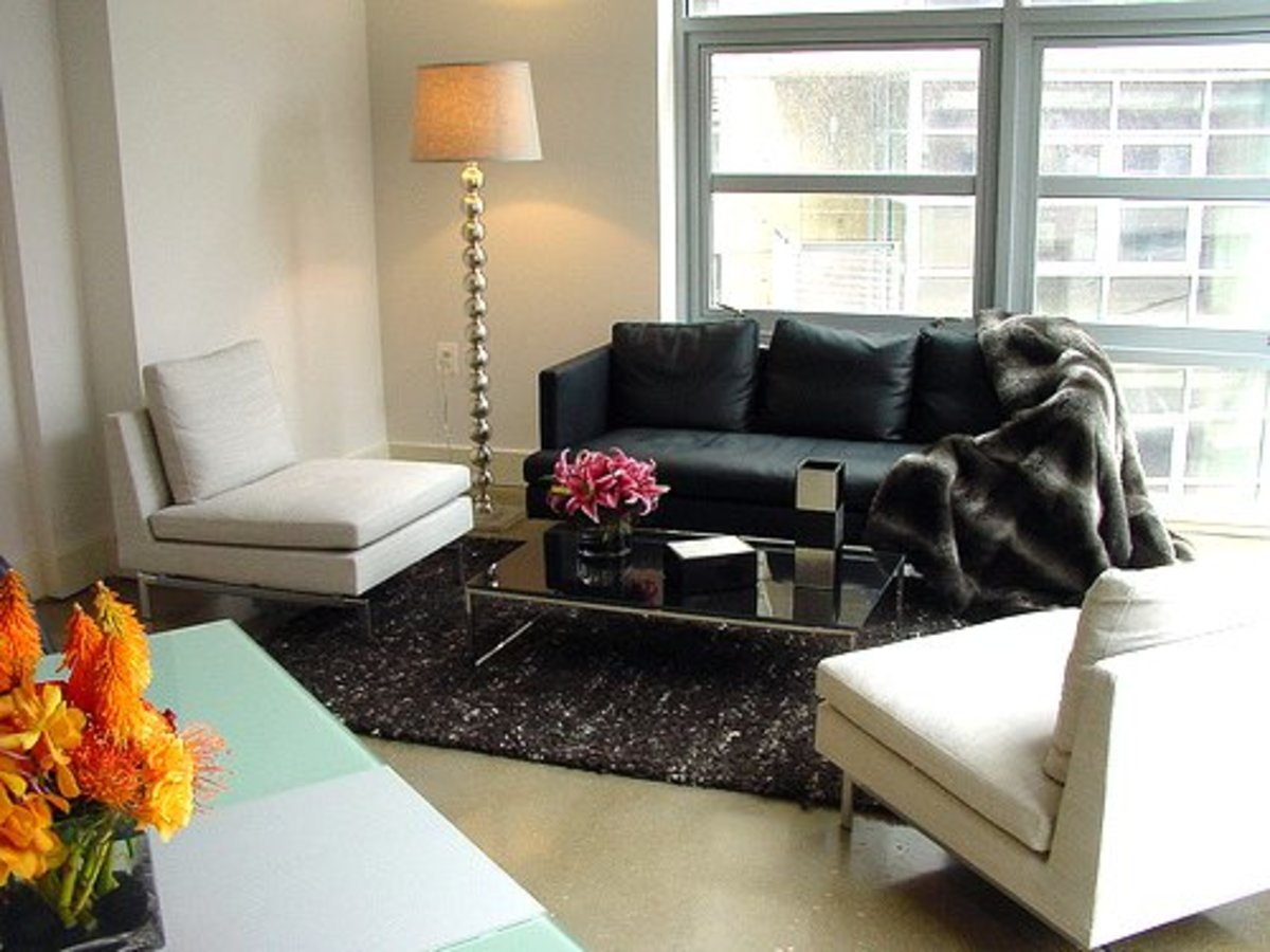 Clutter is bad energy in Feng Shui and for small apartment, be selective when choosing furniture and decorative items