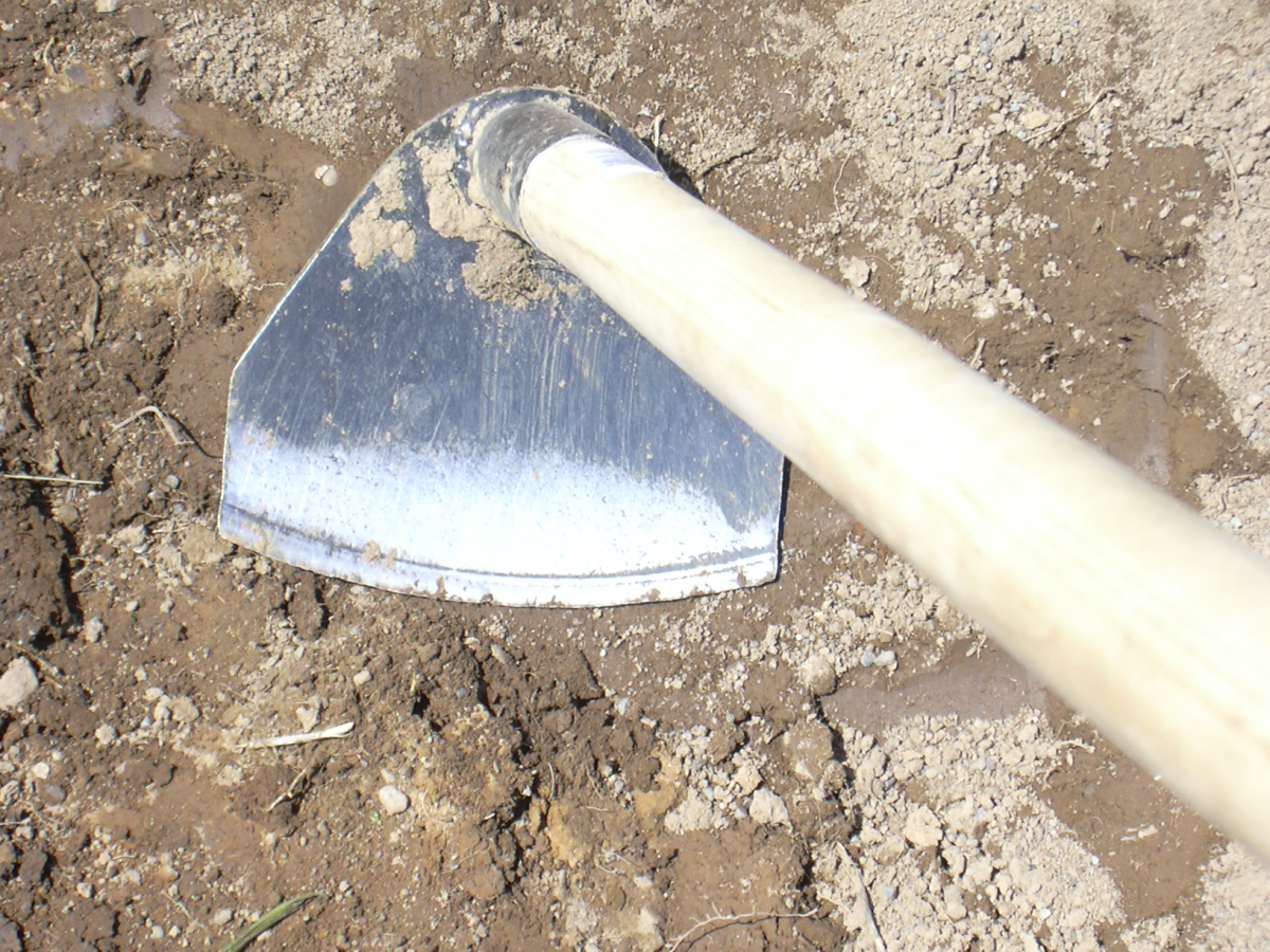 70F Field Hoe by Rogue Prohoe moves our water-logged clay soil like nobody's business, and isn't fazed by the occasional rock.
