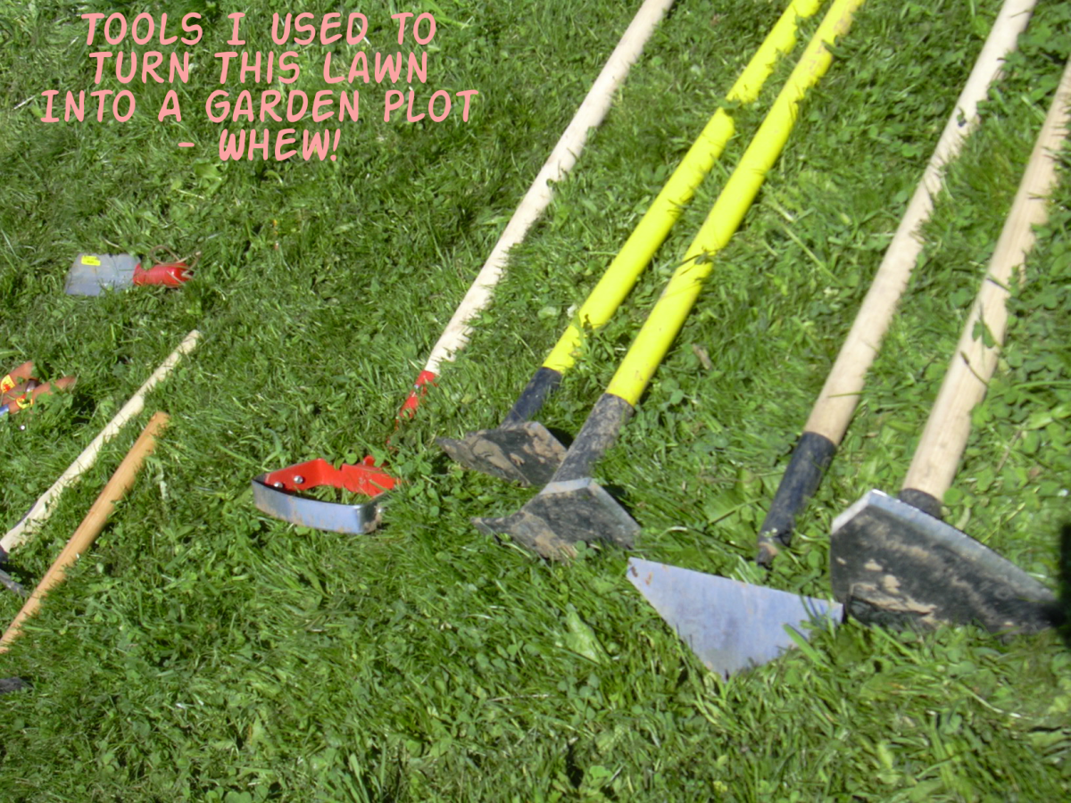 Manual tools I used to turn lawn into garden.