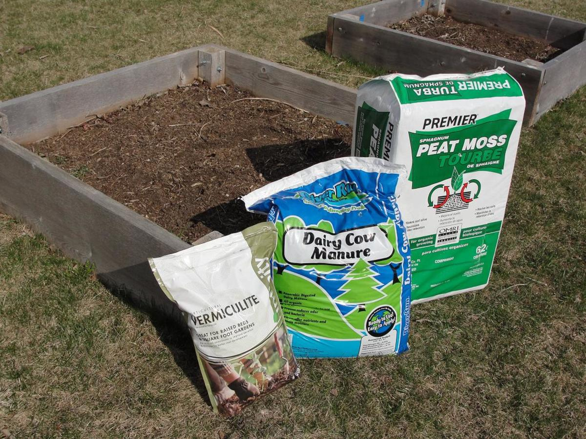 how to amend raised bed garden soil dengarden