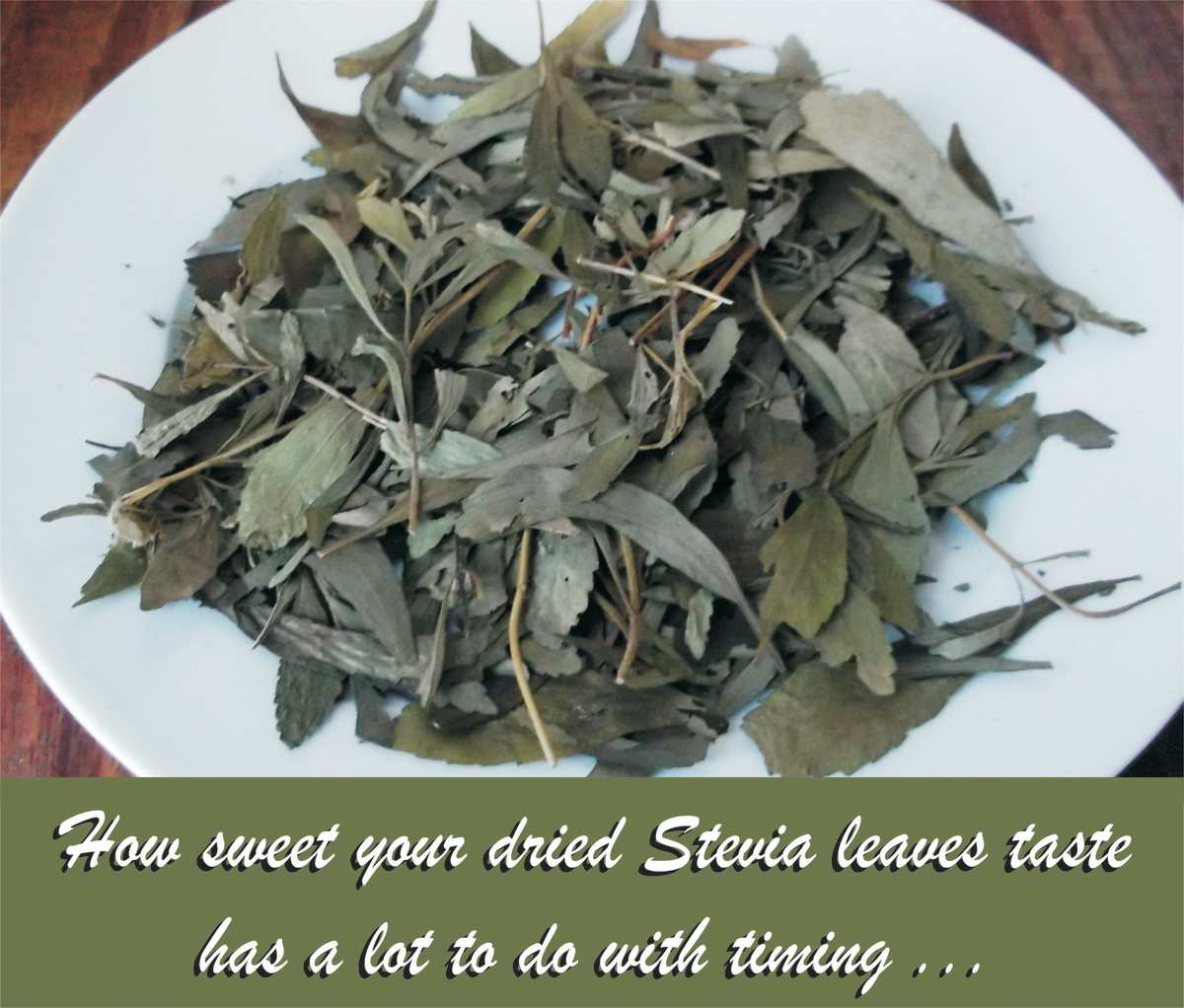 To make stevia powder, simply crush your dried stevia leaves.