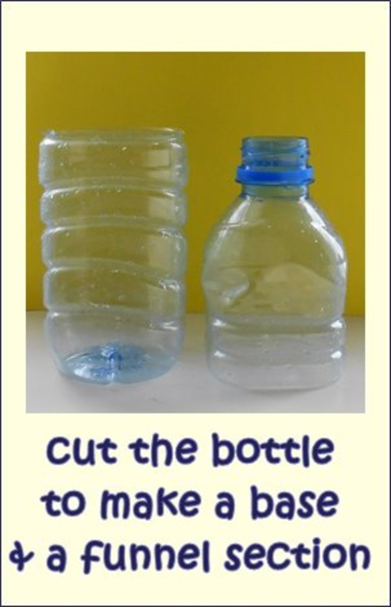 how to get rid of bottle flies