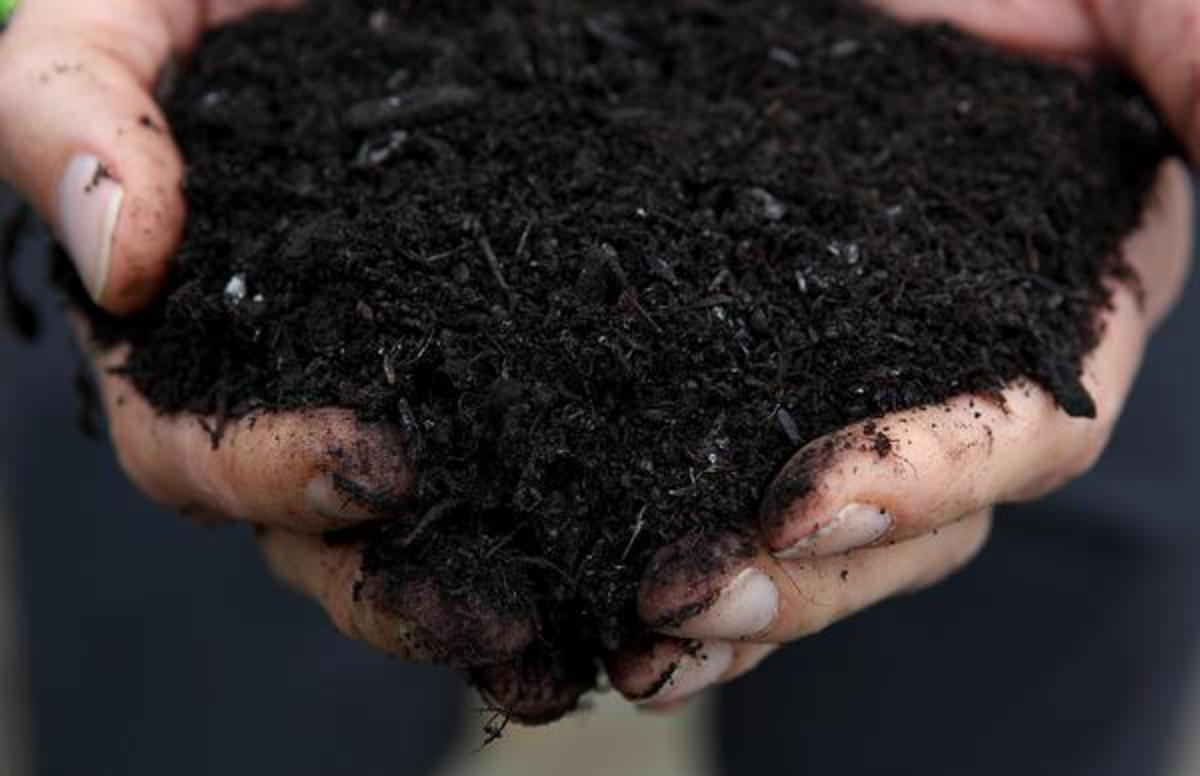 This is how your compost should look if you have done it perfectly