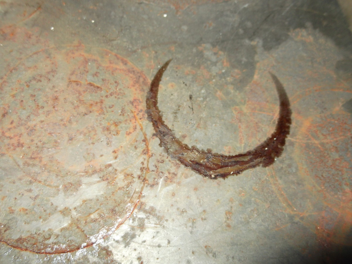 This is how my very old wood stove surface looked at the end of winter after - How I Clean My Wood-Burning Stove Dengarden