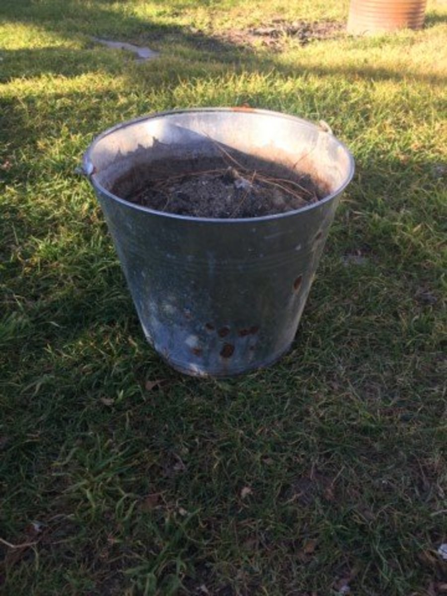 Always carry ash from your fire or stove in a metal bucket. Embers may still be hot enough to melt a plastic bucket.