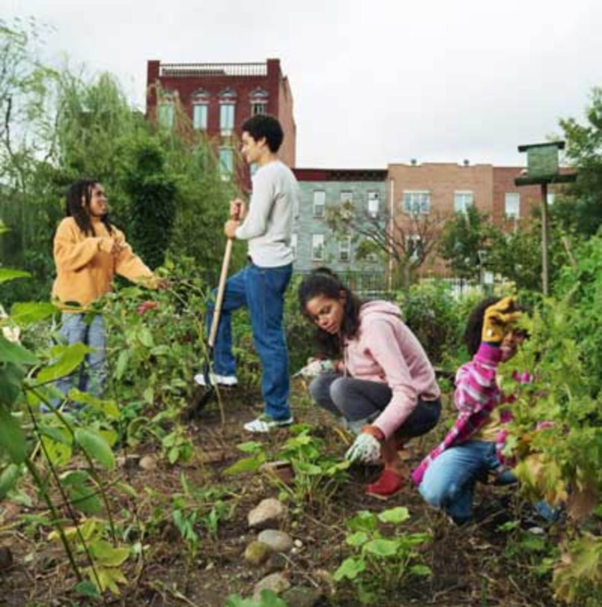 Permaculture emphasizes caring for the Earth, caring for people, and sharing resources.